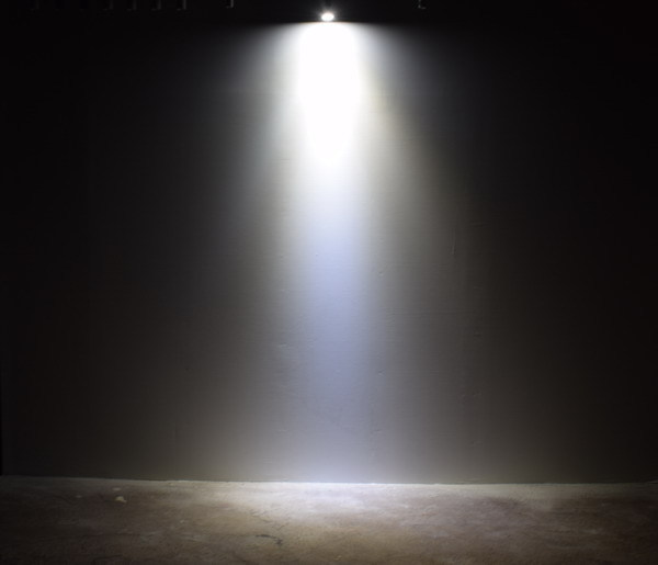 BeeLIGHTのLED電球「BH-0711N-BK-TW」の配光写真。