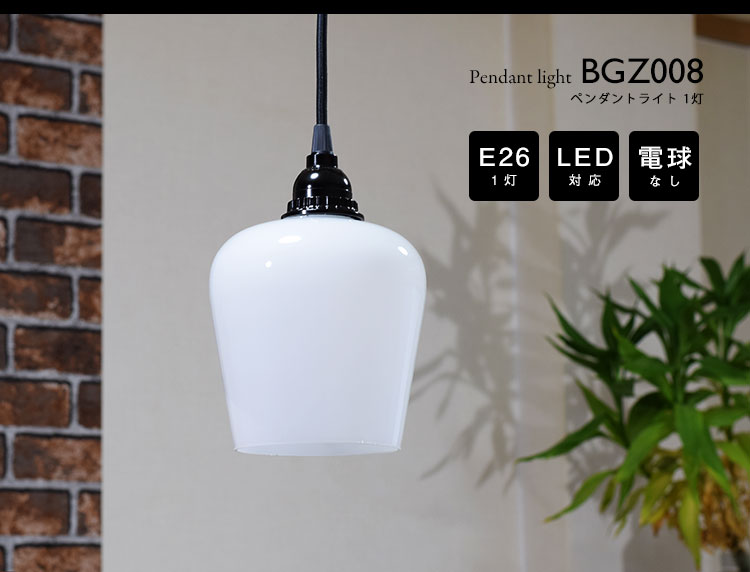 Pendant Light ペンダントライト BGZ008