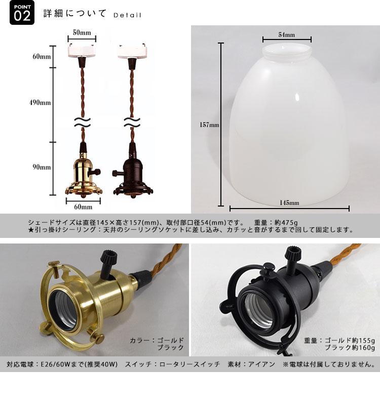 Pendant Light ペンダントライト BGZ009