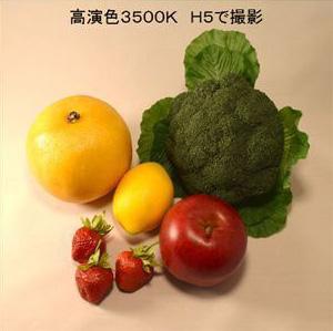 BeeLIGHTのLED電球「BH-0826H5Ra95」で撮影した野菜の写真。